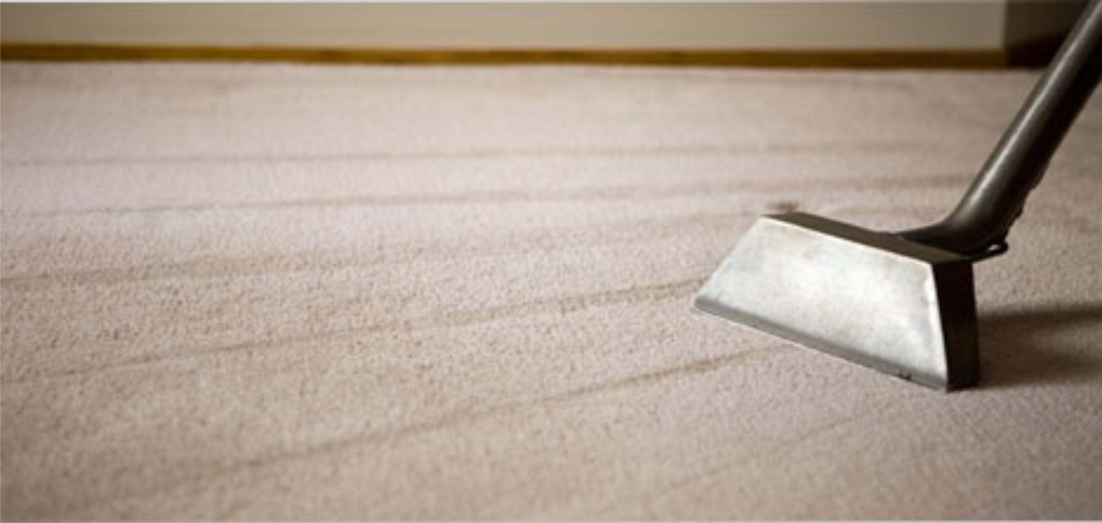 Flooring maintenance part two paradigm interiors carpet cleaner dailygadgetfo Choice Image